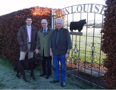 Dunlouise Angus Sale